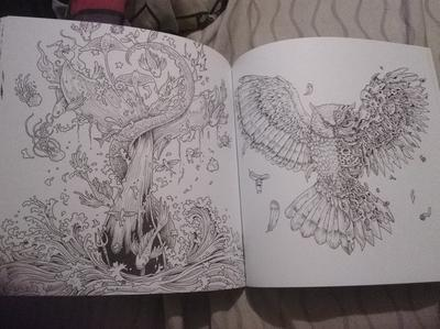 Imagimorphia Adult Coloring Book An Extreme And Search Challenge