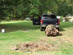 pulling tree stump General grabbers