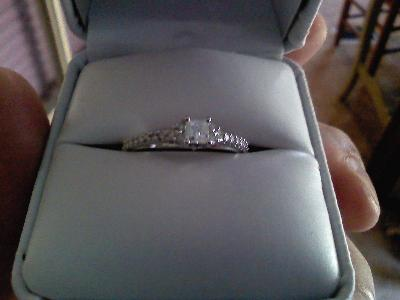 12 Carat TW Princess and Round Cut Diamond Engagement Ring in