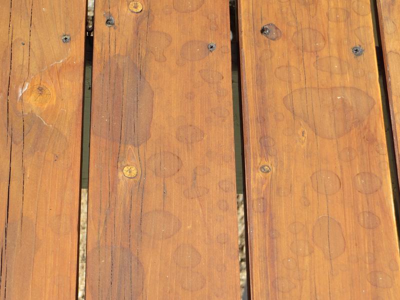 Front Deck After Rain