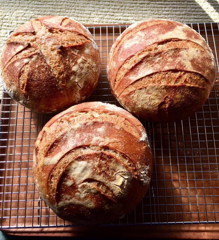 Bobs red mill organic unbleached white all purpose flour 48 oz sourdough breads fandeluxe Images